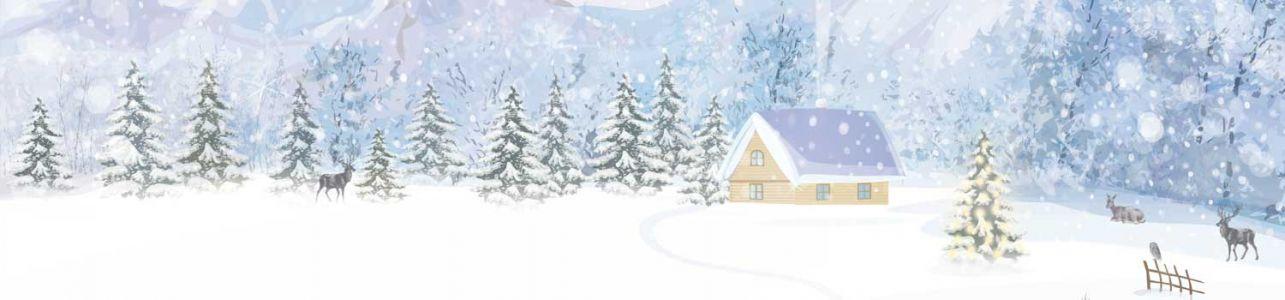MOTIV: Weiße Weihnacht