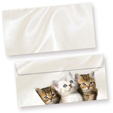 Katzen Briefumschläge (50 Stück)