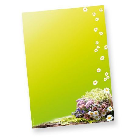 Frühling Briefpapier grün (50 Stück) Motivpapier Design DIN A4