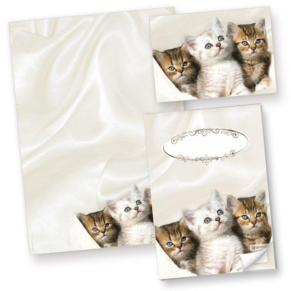 Motivpapier Katzen (250 Stück) Briefpapier, inkl. 3 Postkarten + Schreibblock