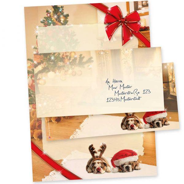 Motivpapier Weihnachten Drollige Hunde (10 Sets ohne Fenster) Weihnachtsbriefpapier mit Umschläge