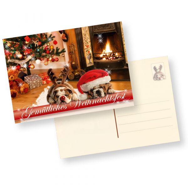 Postkarten Weihnachten Drollige Hunde (50 Stück) Gemütliche Weihnachtspostkarten mit Hundemotiv