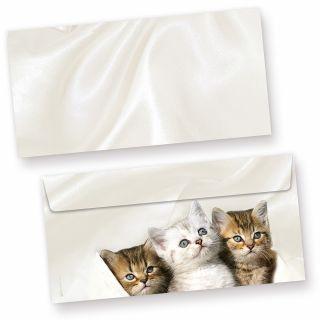 Briefumschläge Katzen (50 Stück) 3 Kätzchen