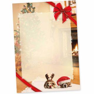 DROLLIGE HUNDE Briefpapier für Weihnachten (50 Blatt) Weihnachtsbriefpapier mit Motiv DIN A4 bedruckt