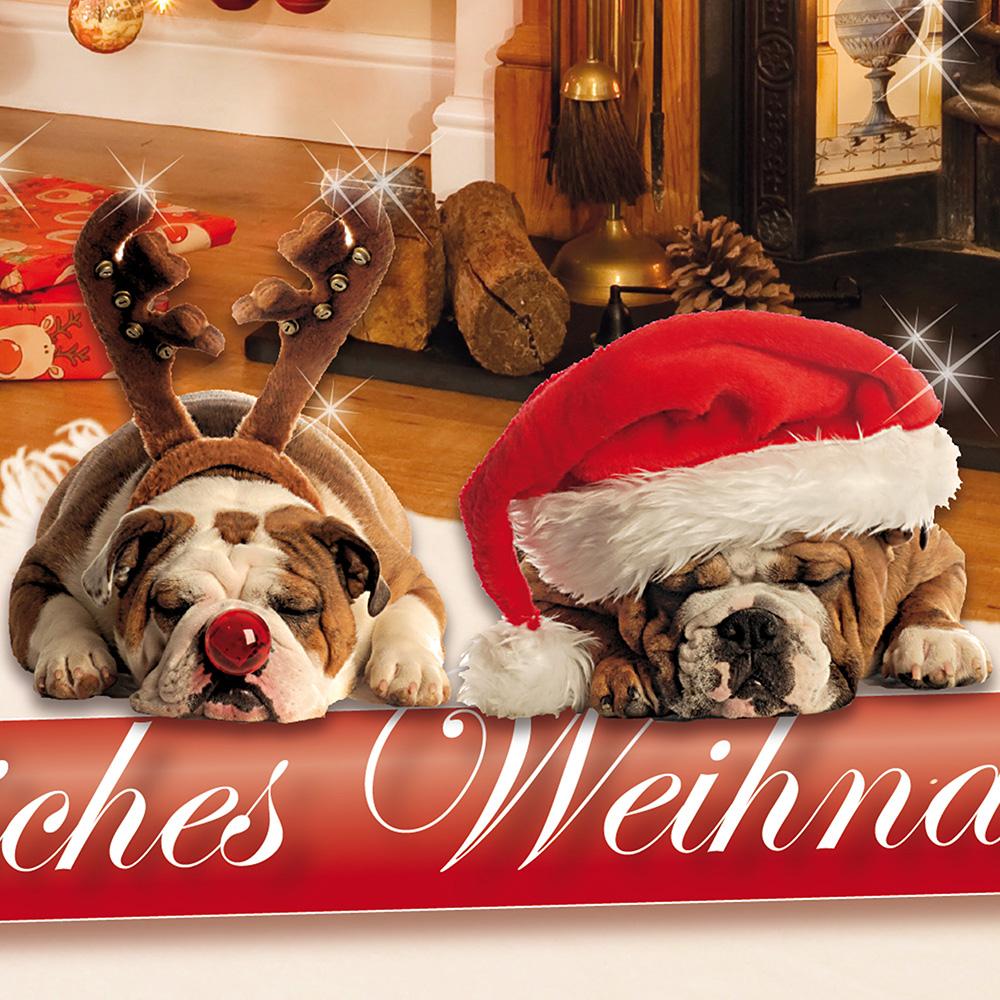 weihnachtskarten hunde lustig set 25 sets mit briefumschl ge lustig witzig ebay. Black Bedroom Furniture Sets. Home Design Ideas