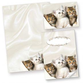 Katzen Briefpapier (50 Blatt) Motivpapier A4 90g inkl. 10 Postkarten + Schreibblock