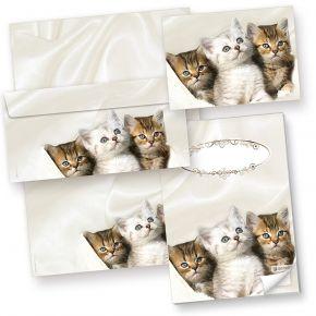 Katzen Briefpapier-Set (25 Sets) + 3 Postkarten + Schreibblock