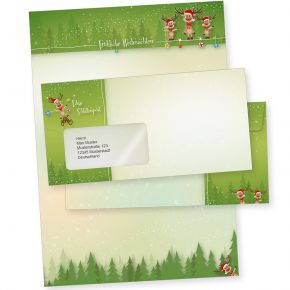 NEU Rentiere 10 Sets Weihnachtsbriefpapier mit Fensterumschlag, Briefpapier Weihnachten A4